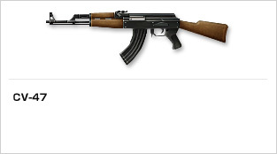 img_weapon_rifle_02.jpg