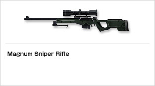 img_weapon_rifle_09.jpg