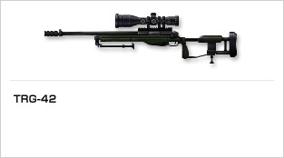 img_weapon_rifle_15.jpg